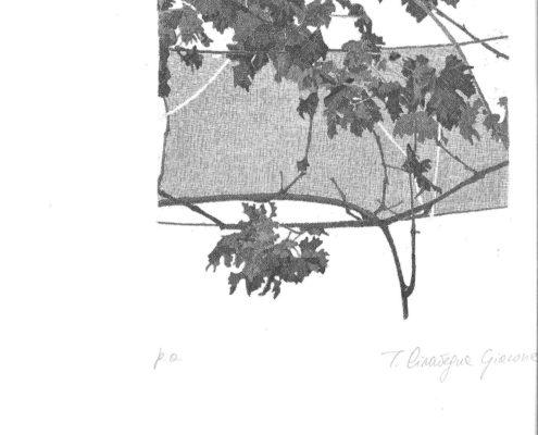 ARTE - TINA CIRAVEGNA_2